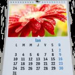 Calendar de perete A4